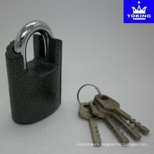 Shackle Protected Iron Padlock with Vane Keys (1313)