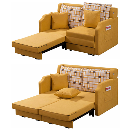 Loveseat Sofa Cum Bed