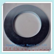 High Quality Neodymium Magnet for Car Stereo