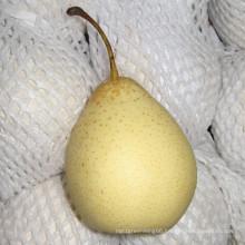 2016 Crop Chinese Fresh Ya Pear