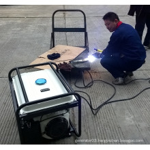 BISON(CHINA)Portable Diesel dc Welding Generator