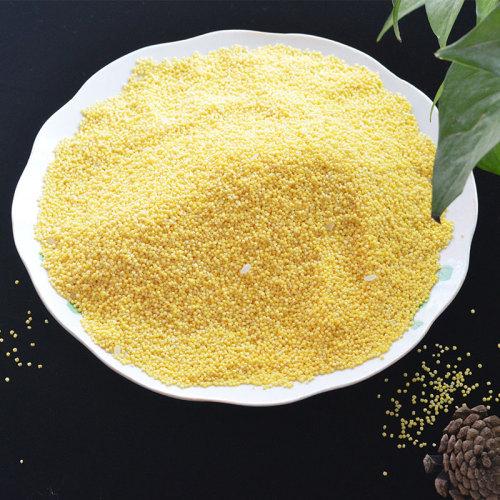 Cheap good quality Rhubarb rice Whole grains