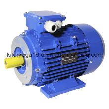 Серии y2 3-фазных асинхронных электродвигателей для промышленности 0.75 кВт-генератор 280kw