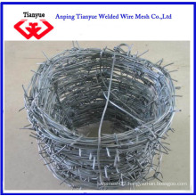 Hot Dipped Galvanized Barbed Wire (TYB-0061)