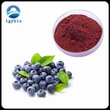 Hot Selling Product Blueberry Powder /Blueberry Juice Powder