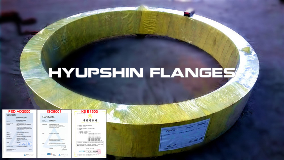 Hyupshin Flanges Nfe29203 Plate