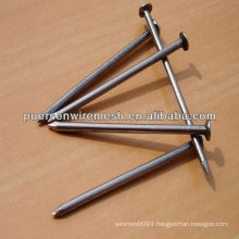 Common Steel Nail, Wire Iron Nials