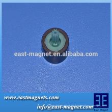 Ferrit-Magnet mehrere Pole für Fahrzeugkühlung Lüftermotor / Multipol-Magnetring mit Kunststoff-Rotor
