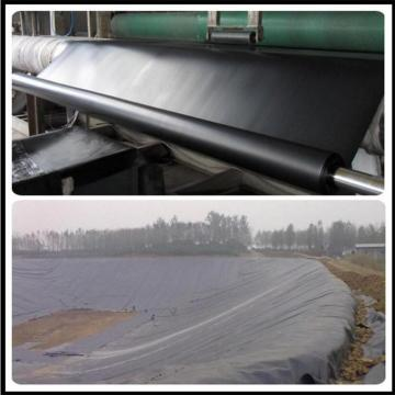 Root Barrier 1.2mm HDPE Geomembrane para Horticultura