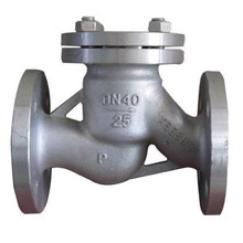 Swing Stainless Steel Check Valve