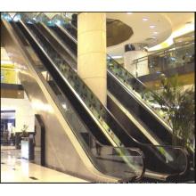 Aksen Escalator Intérieur et Extérieur Type de Porte