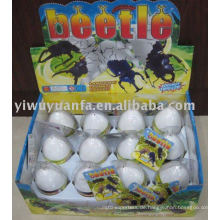 Wachsende Hatching Beetle Egg Toy