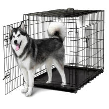 Galvanized or pvc coated welded Pet Cage (factory) dog cat rabbit