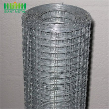 Galvanized Welded Wire Mesh 14 Gauge roll
