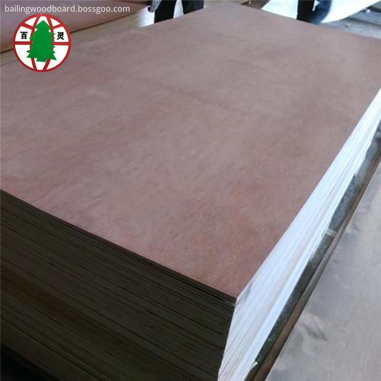 Bintangor plywood01