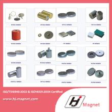 Vendas quentes & conjunto magnético do íman com projeto do cliente