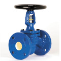 DIN Cast Iron Bellow Globe Valve