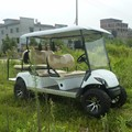 Hot Sell Off Road Gas Golfwagen 300CC