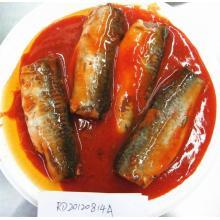 Poisson maquereau en conserve dans une sauce tomate
