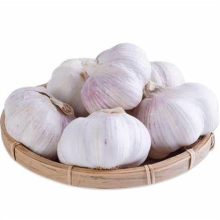 2021 Promotional New Crop High Quality Natural Normal White Fresh Garlic