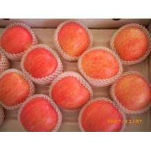 2013 apple fruit