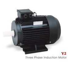 Y2 Serie (MS) Dreiphasiger asynchroner Elektromotor (22kw)