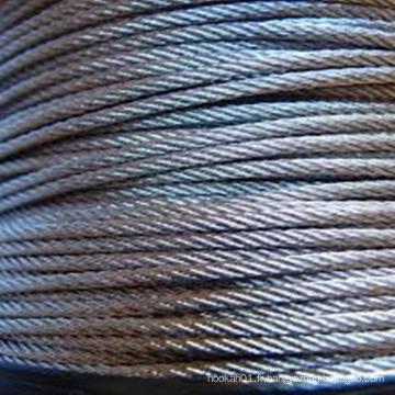 Câble métallique en acier inoxydable 316 1x19 3,18 mm