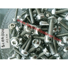 Torx Screw Pan Head Screw Thread B Self Tapping Screw Form B