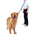 Nylon Hands Free Waist Dog Trainingsleitung