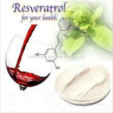 22. Polygonum Cuspidatum Root Extract Water Soluble Resveratrol