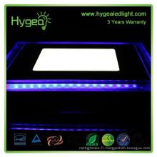 Nouveau produit! Bleu + blanc Couleur carré 12w led led light price