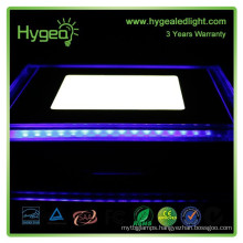 New product! Blue+White Color square 12w led panel light price