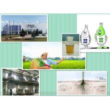 Regulador de Crecimiento de Plantas 1 - Naphthalene Acetic Acid Naa
