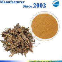 Extrait de racine de fines herbes naturel poudre Spikenard Extrait