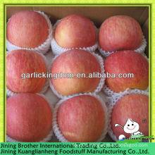 red star apple fruit from origin