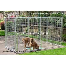 Geschweißte Wire Mesh Dog Panel, Hund läuft