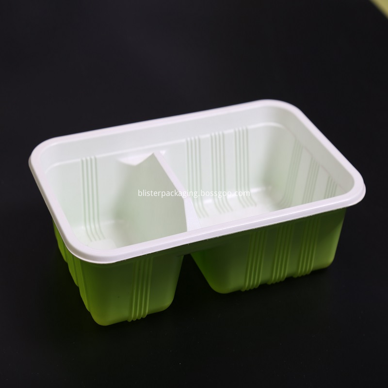 Compartment Plates and Tray