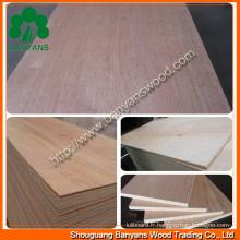 Contreplaqué simple de meubles de qualité avec la bonne qualité