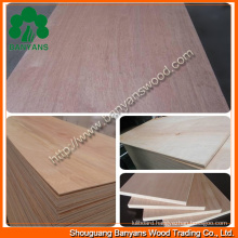 Quality Furniture Plain Plywood with Good Quality