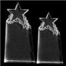 Nouveau trophée de la mode Crystal Star