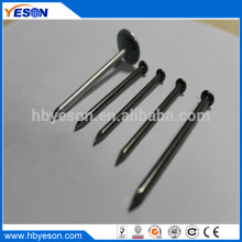 low price with prime quality galvanized low carbon steel common wire nails