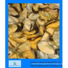 frozen green mussels