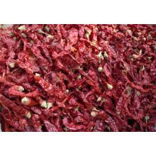 Exportação de boa qualidade Pimenta vermelha chinesa fresca