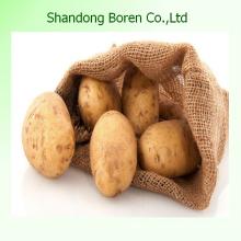 2015 Pomme de terre chinoise de bonne qualité