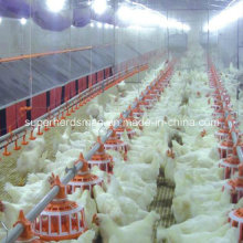 Équipement de ferme de volaille d'éleveur de qualité supérieure