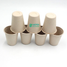 Anhui EVEN Eco Friendly 100% Biodegradable Disposable Sugarcane Bagasse Coffee Cup Mug Set With Lid