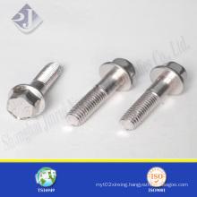 Stainless Steel 304 Hex Flange Screw