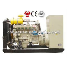 Natural o Bio generador de gas (10Kw a 700kW)