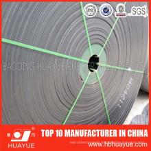 Standard Cold Resistance Conveyor Belt
