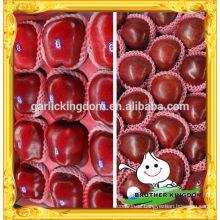 Manzana de Huaniu / manzana de China huaniu / manzana roja deliciosa